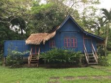 80-year-old Ginger Villa